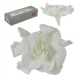 Gardenia Blanca Ø 10 cm (3ud)