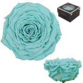 Rosa XXL Verde Agua (1 ud)