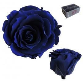 Extra Rosa Ø 6 cm Azul (6 uds)
