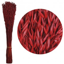 Avena Sativa Rojo 170 grs