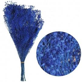 Brooms Pres. Azul Electrico...