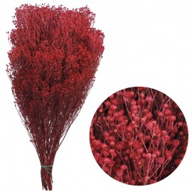 Brooms Fucsia 200 grs