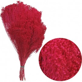 Brooms Buganvilla 200 grs