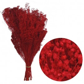 Brooms Rojo 200 grs