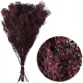 Brooms Burdeos 100 grs