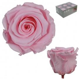 Rosa Estandar Rosa Pastel...