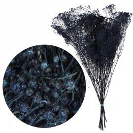 Brooms Azul Oscuro 100 grs
