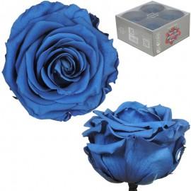 Rosa Premium Azul (x4 ud)