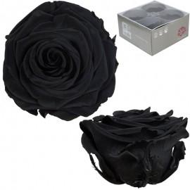 Rosa Premium Negro (x4 ud)