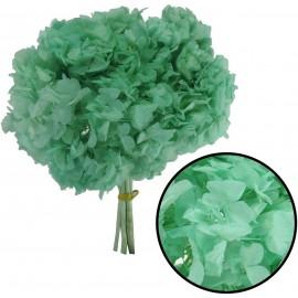 Hortensia Verde Agua Ø 20...