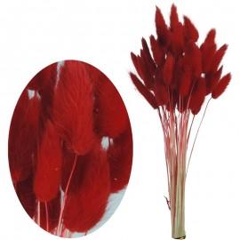 Bunny Tails 50 pcs Rojo