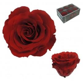 Extra Rosa Ø 6 cm Rojo (6 uds)