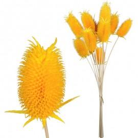 Mini Cardo (12 uds) Amarillo